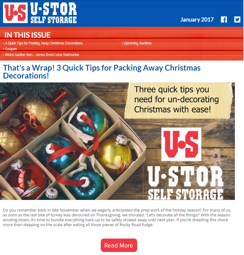 January Newsletter - 3 Quick Tips for Packing Away Christmas Decorations and MORE!!